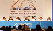 UN Biodiversity Conference Kicks Off in Egypt with the Participation of Morocco