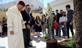 Casablanca: Young Muslims Plant 'Olive Tree of Fraternity' in Synagogue, Church and Mosque