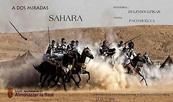 Una exposición fotográfica en España presenta los grandes progresos del Sáhara marroquí