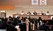 Aprobación formal en Marrakech del Pacto Mundial para la Migración Segura, Ordenada y Regular