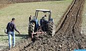 Aménagement hydro-agricole à Boujdour: Pour une mise en valeur des terres sahariennes