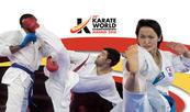 Championnats du monde seniors de karaté à Madrid : 2 médailles de bronze pour le Maroc