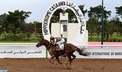 Le cheval Taymour remporte le Grand Prix de SM le Roi Mohammed VI du pur-sang Arabe