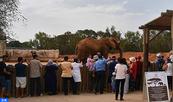 Jardin zoologique de Rabat, environ trois millions de visiteurs depuis son inauguration en 2012