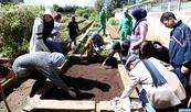Jardins exotiques de Bouknadel : Des écolos en herbe s'initient au jardinage au premier week-end du printemps