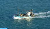 Lancement de l'opération d'identification des barques par radiofréquence (RFID)