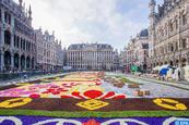 Bruxelles déroule son célèbre tapis de fleurs aux couleurs du Mexique