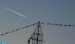 Électricité: Mise en place prochaine d'un programme d'actions maghrébin pour le renforcement des interconnexions