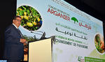 Agadir: Lancement des travaux du 4ème congrès international de l'arganier