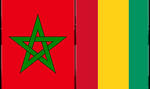 Maroc-Guinée: Vers l'édification d'un véritable partenariat stratégique entre les deux pays
