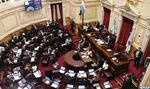 Argentine : Le Sénat approuve le projet d'austérité budgétaire pour l'année 2019 au milieu de manifestations massives