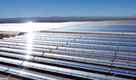 À Ouarzazate, dans le sud marocain, la plus grande centrale solaire au monde (Reportage de TF1)