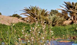 """عرض وثائقي """"الصحراء: حكايات الماء والرجاء"""" ضمن دورة للسينما الدولية في بنما"""