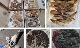 الدار البيضاء-سطات.. إحباط محاولة تصدير غير مشروع لحوالي 200 كيلوغرام من القطع الجيولوجية