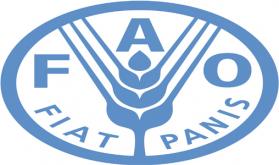 كتاب الإحصاء السنوي للفاو.. أكبر قاعدة بيانات حول الأغذية والزراعة في العالم