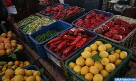 ارتفاع قيمة صادرات المنتجات الغذائية الفلاحية سنة 2019 وآفاق واعدة للموسم المقبل