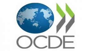 """منظمة التعاون الاقتصادي والتنمية تشيد بـ """"ثقة"""" المغرب وبتعاونه """"المتميز"""""""