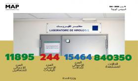فيروس كورونا .. 136 حالة جديدة بالمغرب ترفع العدد الإجمالي إلى 15 ألفا و464 حالة