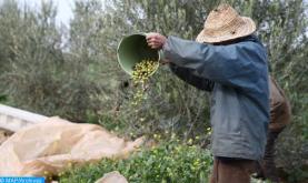 الزراعات الخريفية.. الإنتاج المتوقع سيمكن من تلبية احتياجات الاستهلاك والتصدير بشكل كاف بحلول ماي 2021 (وزارة الفلاحة)