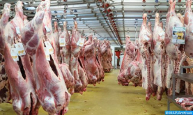 طنجة .. حجز 980 كيلوغرام من اللحوم غير الصالحة للاستهلاك والمتأتية من عمليات الذبيحة السرية