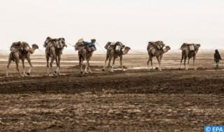 Spanish TV Showcases Life of Moroccan Sahara Nomads