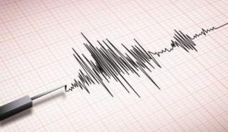 4.9-Magnitude Tremor Shakes Taounate Province