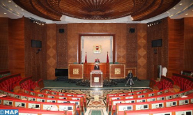 House of Advisors Adopts Two Bills on Electoral Process