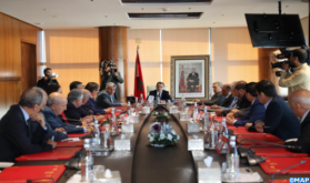Consultations with Political Parties on Forthcoming Elections Aimed at Building Consensus and Pursuing Reforms (Statement)