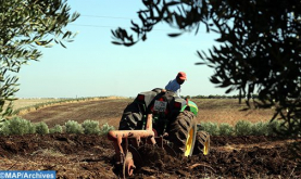 Fall Crop Rotation Program Posts 60% Implementation Rate - Ministry