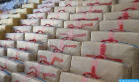 Police Foil International Drug Trafficking Operation Near El Jadida, Seize Over 3 Tons of Cannabis Resin