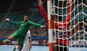 African Men's Handball Championship: Morocco Lose to Algeria (30-33)