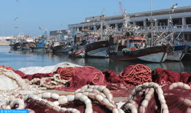 Production of Morocco's Coastal Fisheries Down 7% in 2020