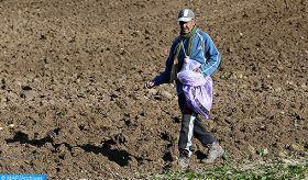 Crop Year 2019-2020 : Compensation Procedure for Farmers in Disaster Areas Launched