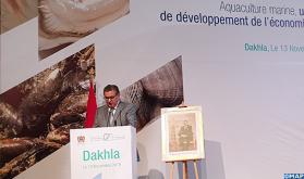 La región de Dajla-Oued Eddahab acapara el 60% de la producción acuícola nacional (Akhannouch)