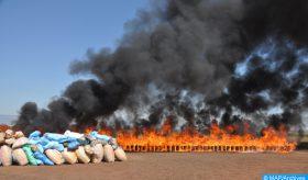 Incineradas en Dajla más de 5 toneladas de chira