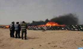 Destruida en Dajla una gran cantidad de chira y productos ilícitos por un valor de 186 MDH