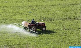 Agricultura, silvicultura y pesca: 318.000 empleos creados entre los segundos trimestres de 2020 y de 2021 (HCP)
