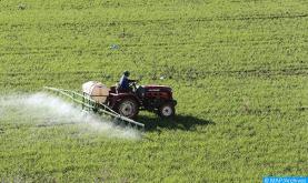 Campaña agrícola 2020/2021: Las perspectivas mejoran con las últimas precipitaciones (Ministerio)