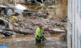 El cambio climático favorece la expansión del virus del Nilo por Europa