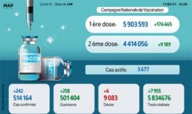 Covid-19: 242 nuevos casos y 258 recuperaciones en 24 horas