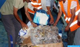 Incautadas en Uxda varias toneladas de productos alimenticios preparados y almacenados en condiciones insalubres (DGSN)