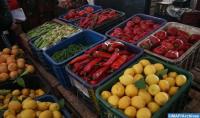 La producción hortícola cubre las necesidades del mercado hasta diciembre de 2020 (Ministerio)