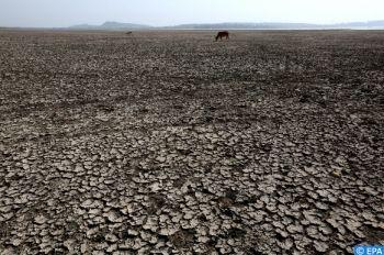 Réchauffement climatique : L'ONU souligne l'urgence de redoubler les efforts