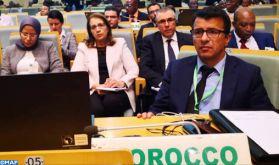 Addis-Abeba: Le Maroc plaide pour de nouvelles solutions novatrices pour le développement de l'agriculture en Afrique