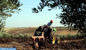Le CAM et l'AFD allient leurs efforts pour accélérer le développement d'une agriculture durable