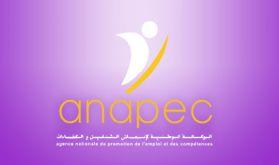 Guelmim-Oued Noun: 415 personnes ont intégré le marché de l'emploi en 2020 (ANAPEC)