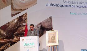 La région de Dakhla-Oued Eddahab s'accapare 60 % de la production aquacole nationale
