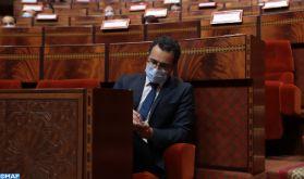 Des solutions structurelles en cours d'élaboration pour soutenir l'artiste marocain (M. El Ferdaous)