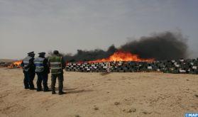 Dakhla: Destruction d'une grande quantité de chira et de produits illicites d'une valeur de 186 MDH