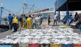 Les professionnels du secteur agricole et de la pêche maritime assurent le bon déroulement des activités à l'export